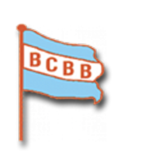 Brazoria County Bail Bonds Logo